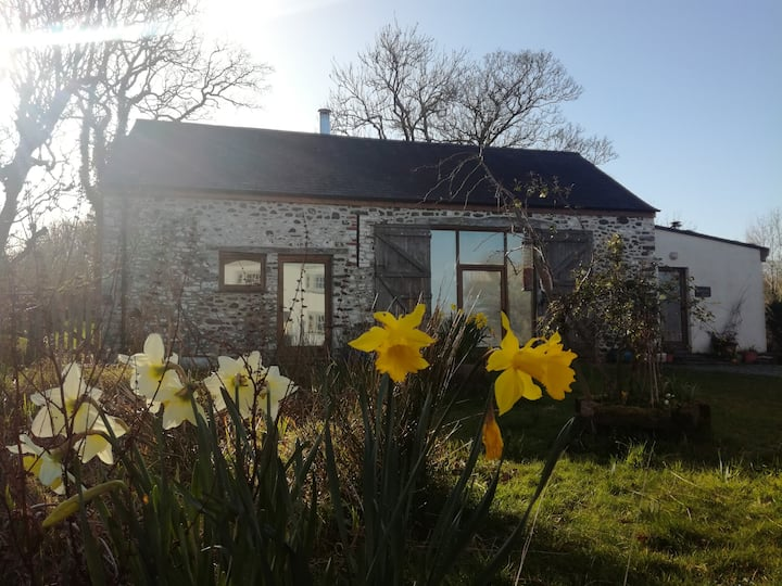Llwynbwch Barn, cosy eco-barn, Under Starry Skies