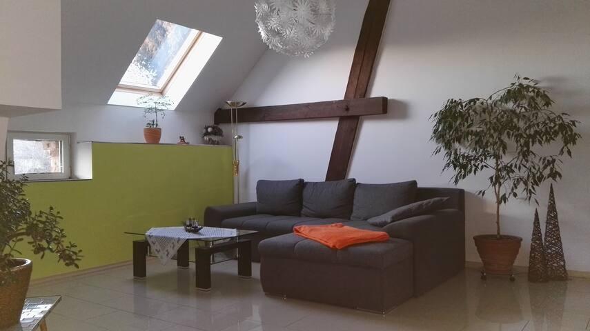 Geräumiges Apartment in Leipzig - Leipzig - Apartment
