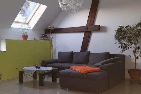 Geräumiges Apartment in Leipzig - Leipzig