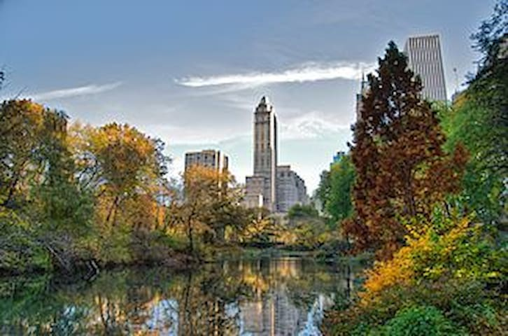 Luxury 1 Bedroom Condo in Central Park South - New York - Appartement en résidence