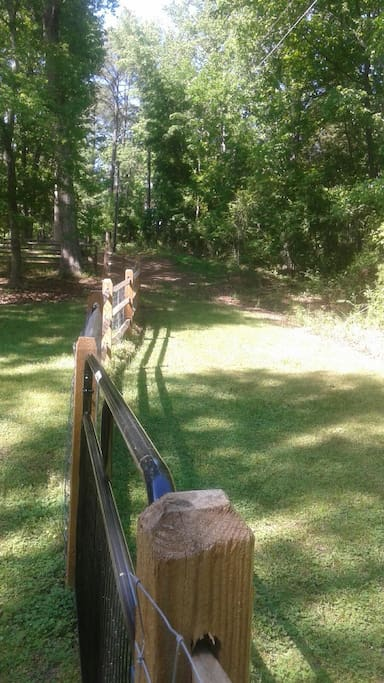 Sipperly backyard with miles of walking/horse riding trails