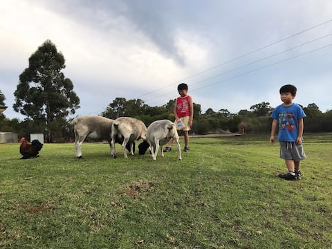 Family Farm Stay with Animals, Playground, Firepit