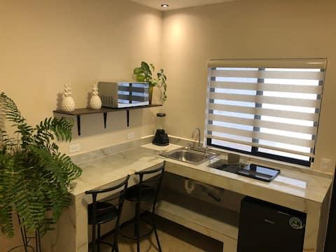 Appartement entièrement neuf! centre-ville de Torreón