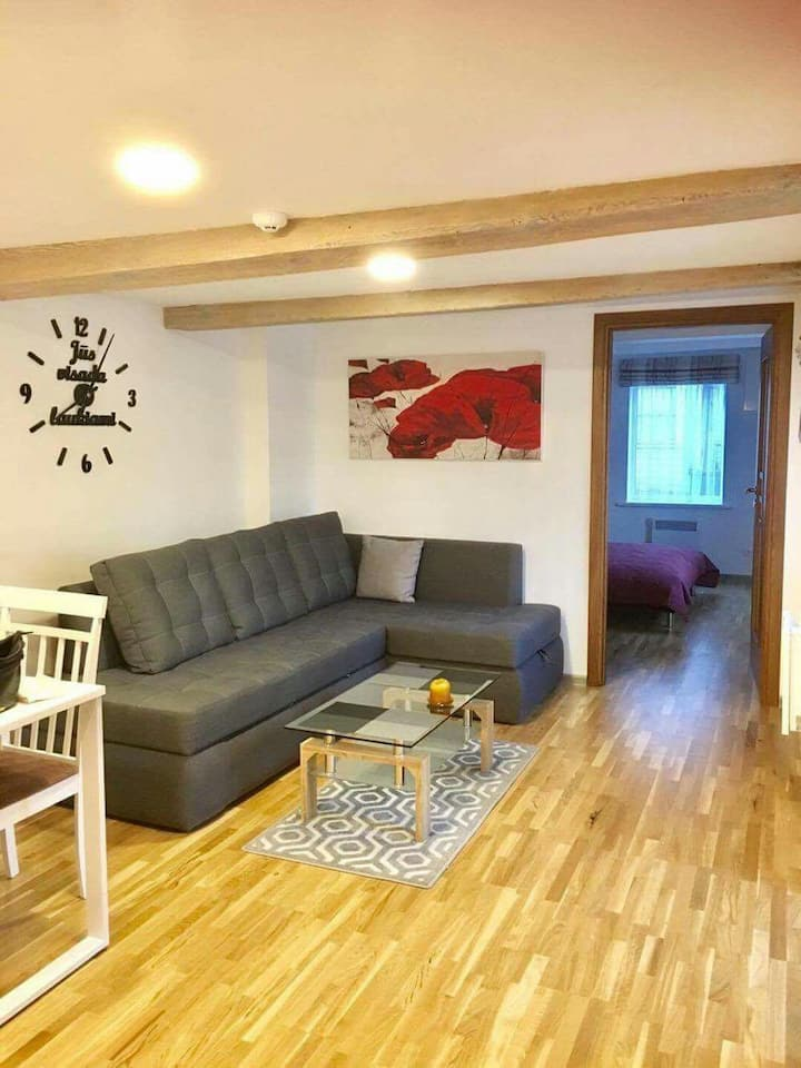Cozy apartment in the city center