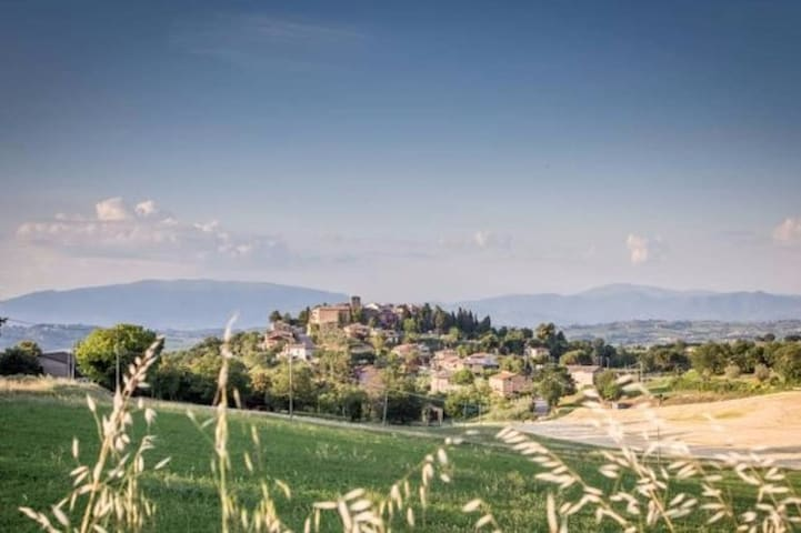 B&B Domus in Castro - Montecchio - Bed & Breakfast