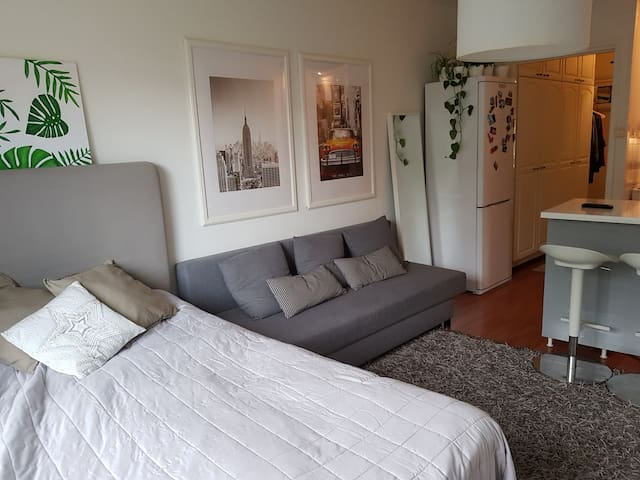 Studio apartment, Pohjois-Haaga, good connections