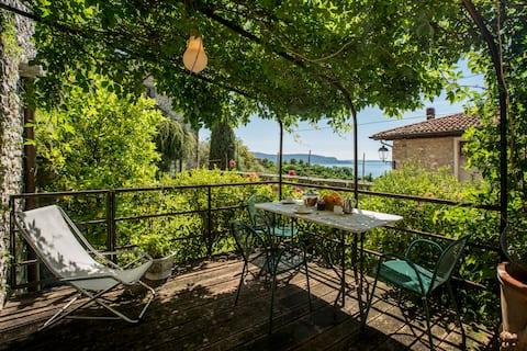 """""""Mimosa"""" lake view terrace"""