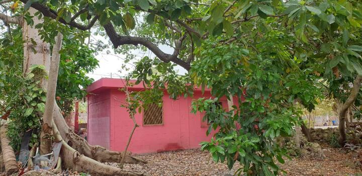 La casa de la Ceiba