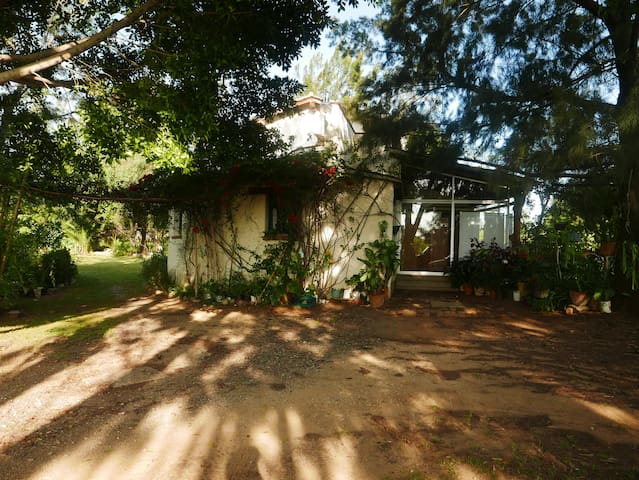 Oasis en Oaxaca para Artistas y Escritores - San Andrés Huayápam - Bed & Breakfast