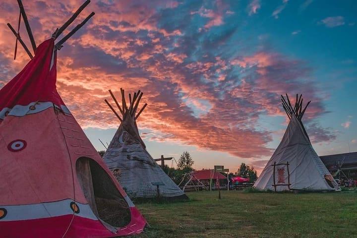 Tipi native house