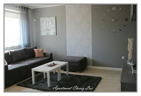 Apartment Cherry Lux Zrenjanin
