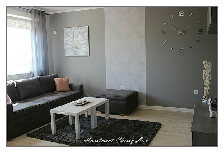 Apartment Cherry Lux Zrenjanin
