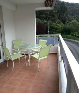 F3 APARTMENT IMPECCABLE, THE CENTER OF THE VILLAGE - Amélie-les-Bains-Palalda - 公寓