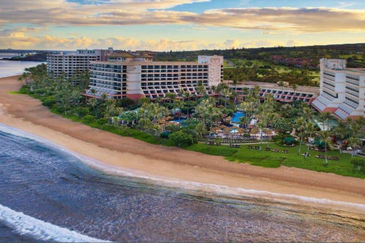 Marriott Maui Ocean Club Rare Find: Xmas Week 2019