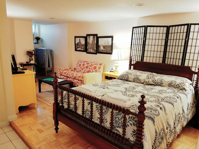 Studio one stop from airport and downtown! - Boston - Apartament