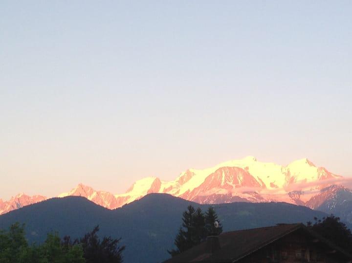Appartement Rez de jardin belle vue Mt Blanc 4pers