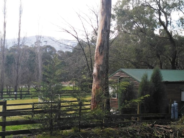 Looking out over The Warburton Rail Trail