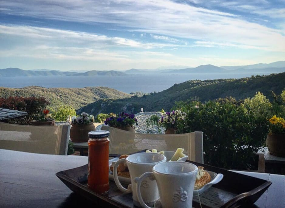 Visitors can taste their snack or drink their coffee enjoying the beautiful colors of the flowers and the view