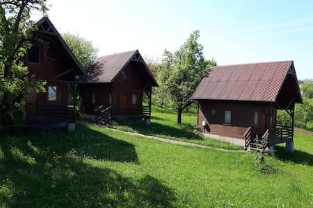 Arabella's Cabin