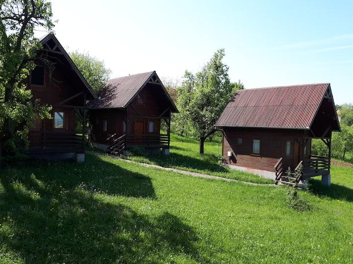 David's Cabin