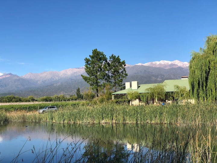 Amazing stay in Mendoza vineyard