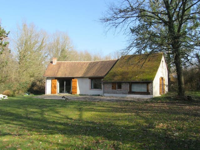 LES MARCASSINS - Marcilly-en-Gault - Huis