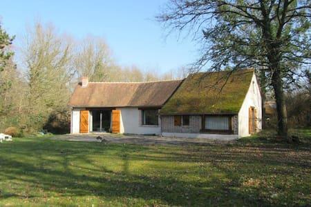 LES MARCASSINS - Marcilly-en-Gault