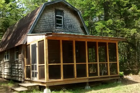 Off Grid Cabin, Families and Dogs