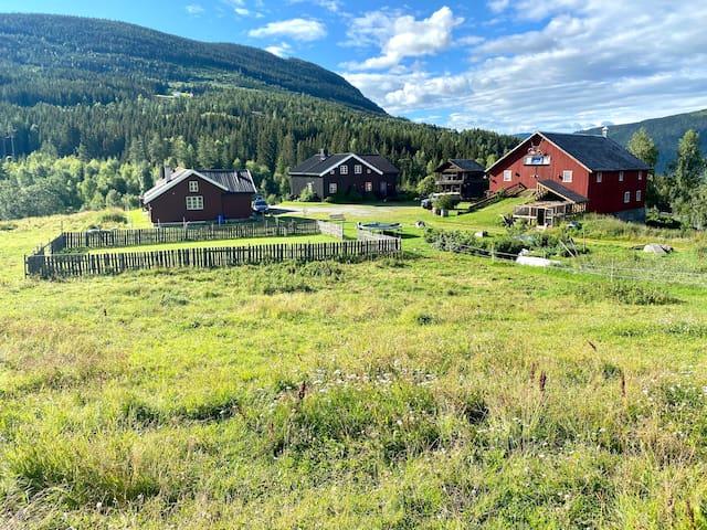 Peaceful farm located in Gol - Hallingdal