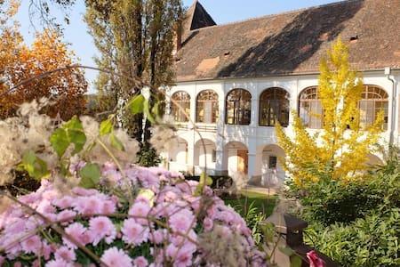 Apartment auf Schloß Welsdorf - Übersbach