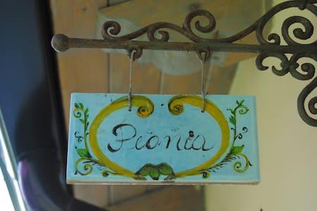 n.2 -Peonia - Camera Matrimoniale  - San Ferdinando - Bed & Breakfast