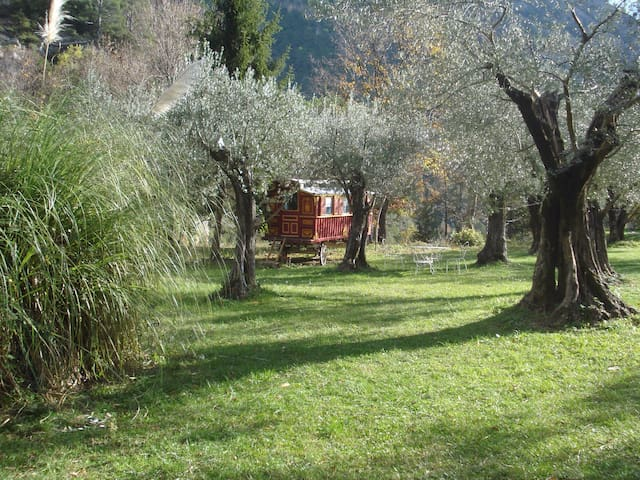 Gypsy Caravan in paradise setting.