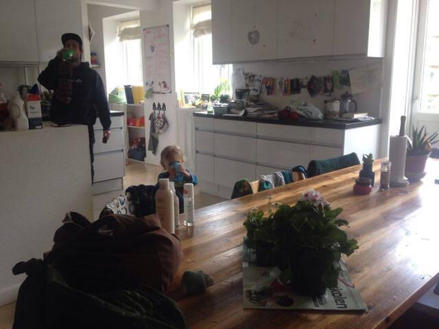 Big, family-friendly appartment close to Nørrebro - København - Apartment
