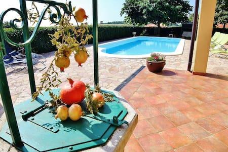 Villa Tankovic A2 Two bedroom apartment - Rovinjsko Selo