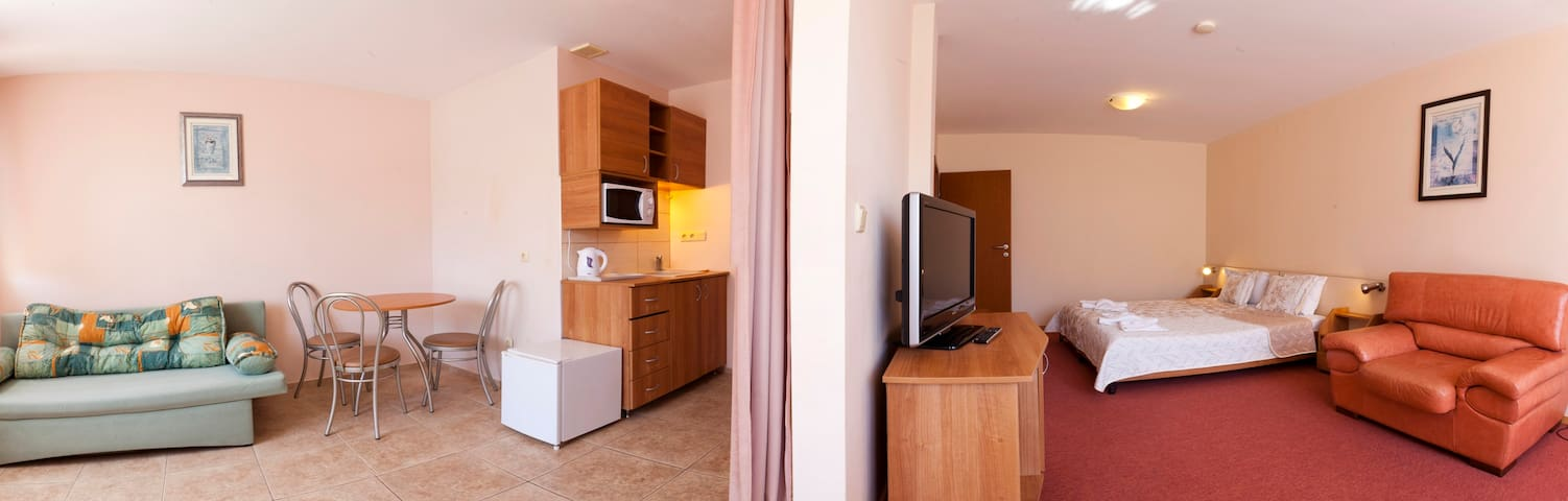 One bedroom Apartment in Hotel Naslada