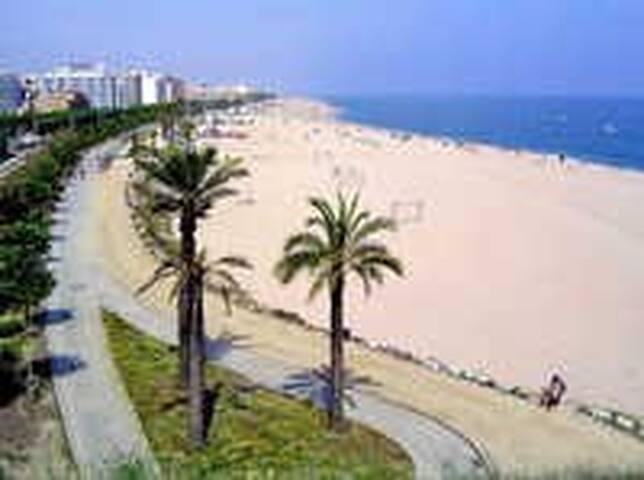 Welcome to Atlantic hostal beach resort Calella - Calella - Hostel