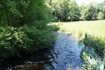 Classified a 1A trout creek -- the lively side