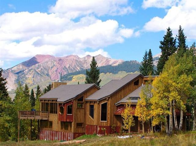 Elk Run Amazing Remodel - Mt. Crested Butte - House