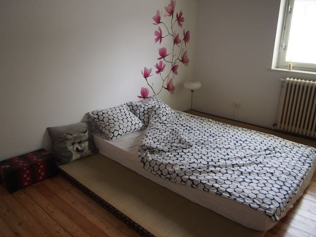 Nice and cosy apartment in the South of Vienna. - Mödling - Leilighet