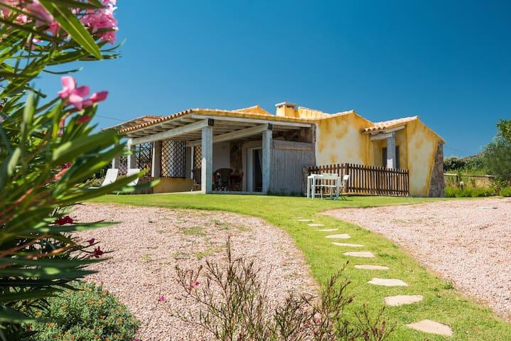 Villa con vista mare, circondata dal verde. - Golfo Aranci - Villa