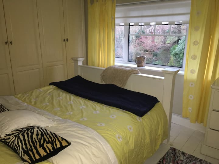 Charming private room in Cork!