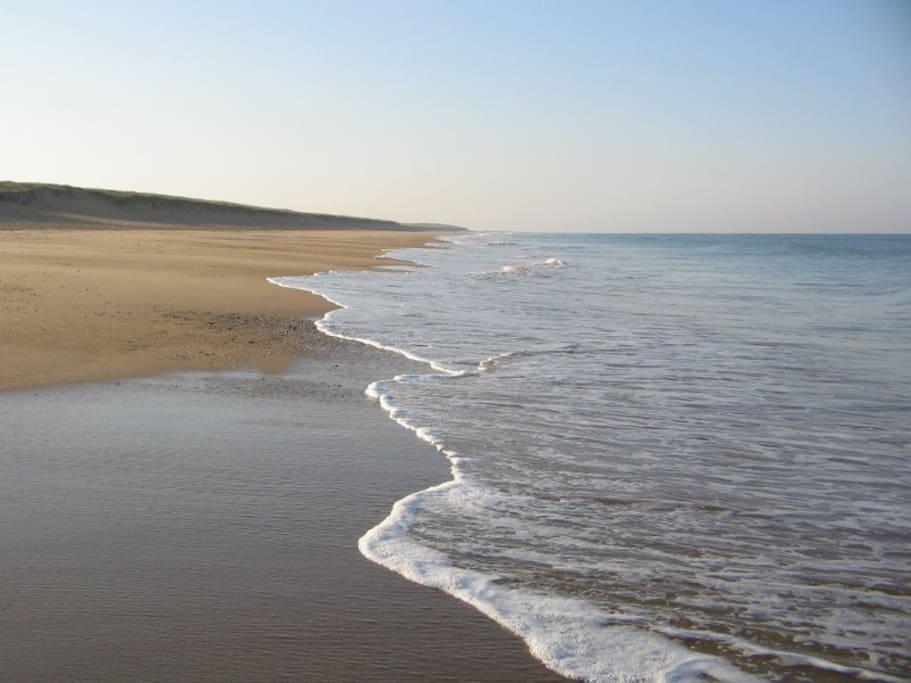 la plage des dunes