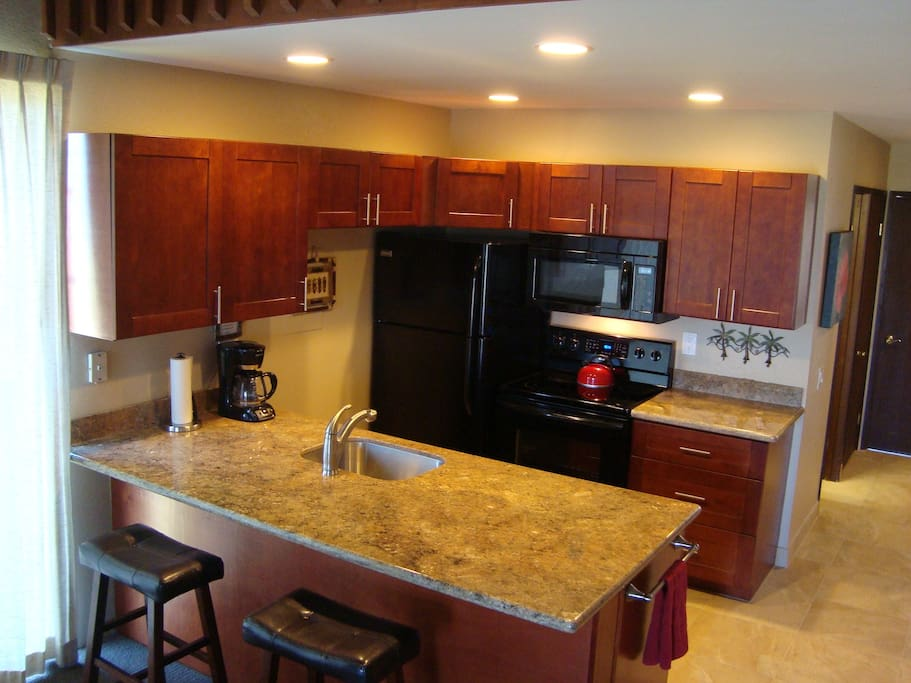 Newly Remodeled and Fully Appointed Kitchen
