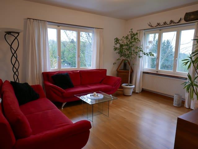 Hübsche 3 1/2 Zimmerwohnung nähe Basel - Himmelried - Wohnung