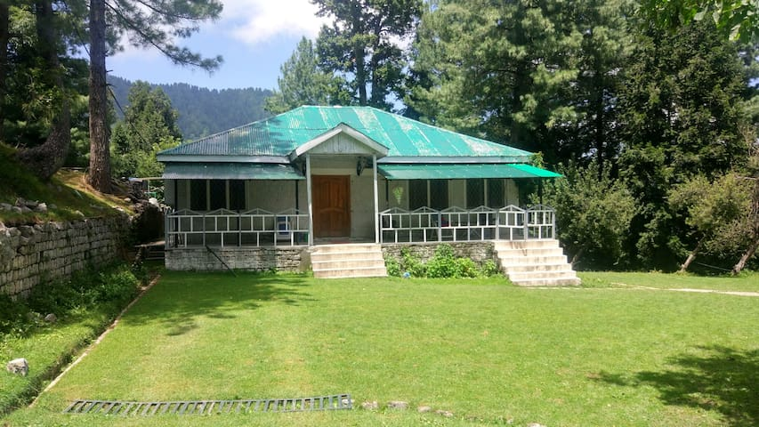 Sunny Lodge. Huge lush green private cottage