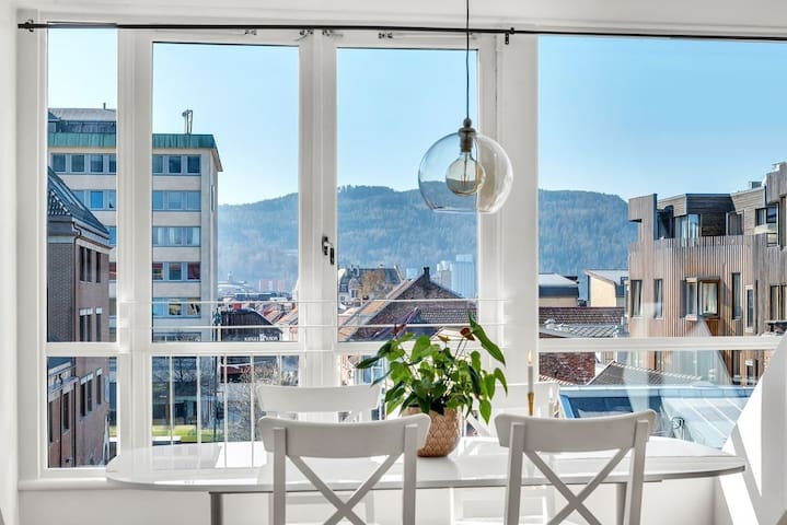 Pretty penthouse in the heart of Trondheim