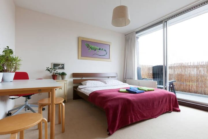Spacious quiet city room (incl use kitchen & bike)