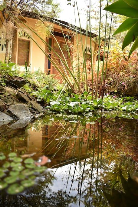 Fachada segundo nivel y Jardín exterior