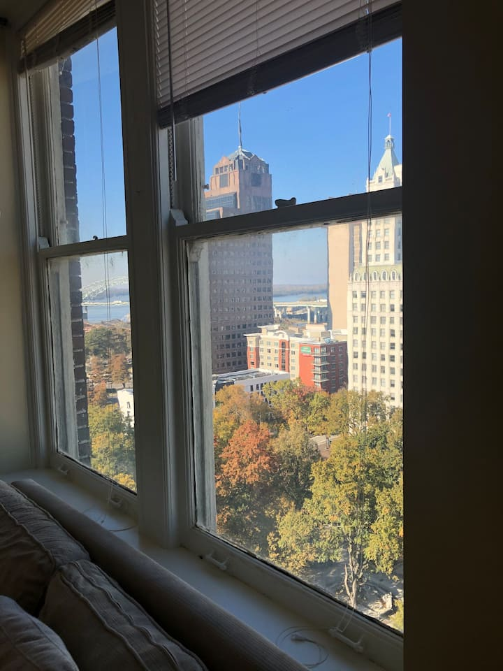 2 BR Apartment, High Speed WiFi, Roku, Downtown!