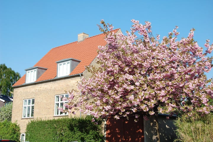 Lovely villa close to Copenhagen